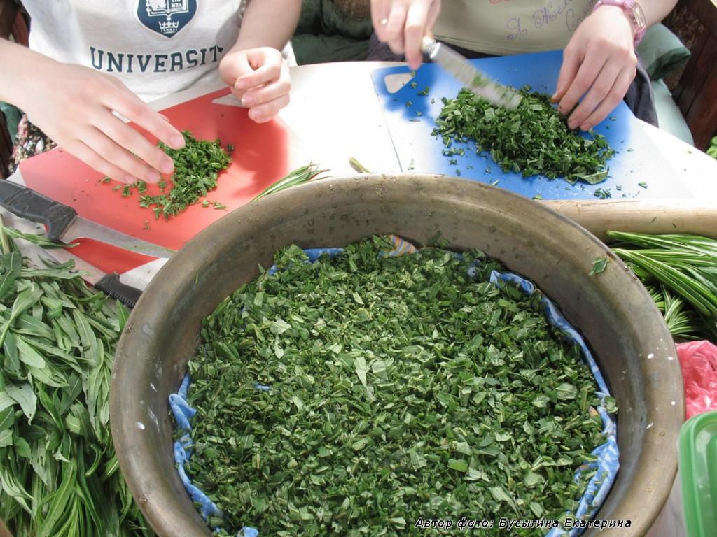 Готовим иван-чай к ферментации